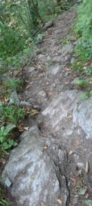 Innsbruck Trail 202012