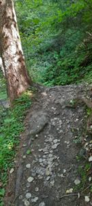Innsbruck Trail 202013 - Kopie - Kopie - Kopie