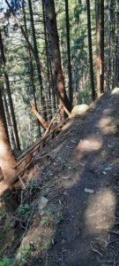 Innsbruck Trail 202021 - Kopie - Kopie
