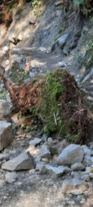 Innsbruck Trail 202028